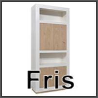 vermeer_fris